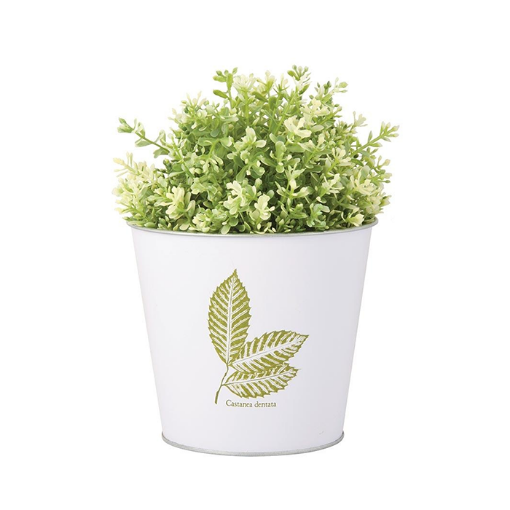 Picture of Leaf Print Flowerpot